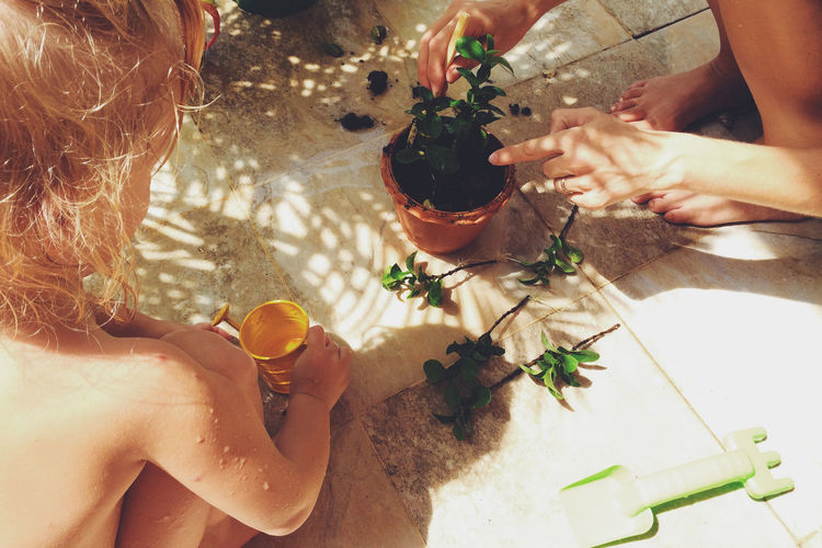Cropped Image Of People With Potted Plant