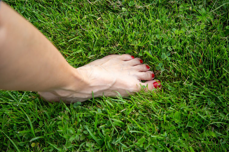 Low section of person on grassy field