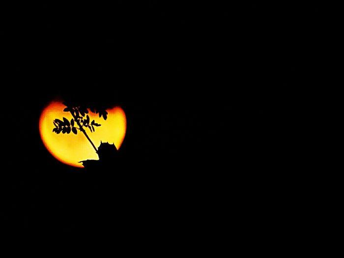 Moon Moonlight Moon_collection Moon_lovers Dramatic Moon 🌙
