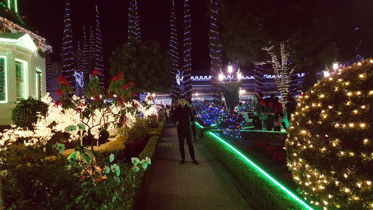 night, illuminated, tree, christmas, christmas tree, built structure, real people, architecture, christmas decoration, walking, celebration, building exterior, large group of people, christmas lights, full length, lifestyles, men, women, outdoors, city, vacations, nature, sky, people