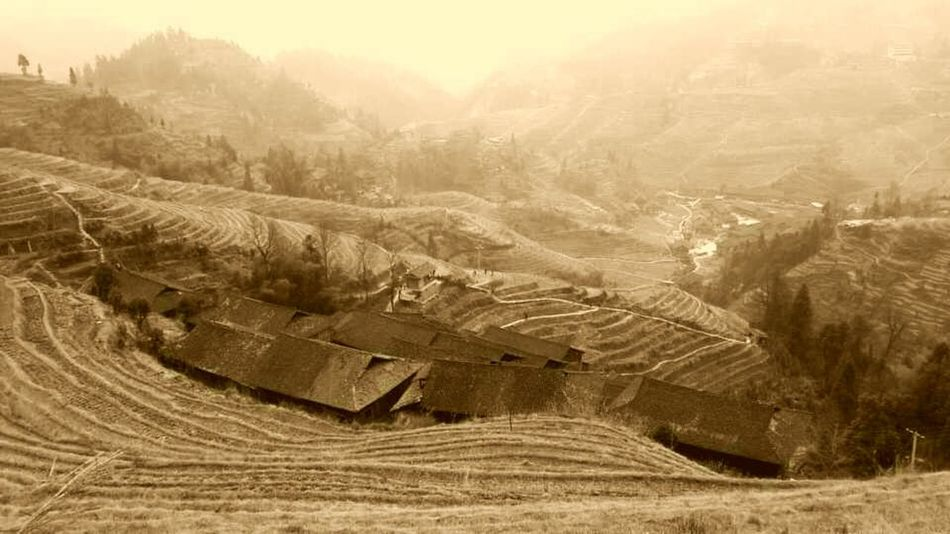 Ricefield Ricefield View Landscape Terraced Field Agriculture No People Outdoors Nature Scenics China Photos China Mountain Nature House China Style Wooden House Agriculture Chinese Culture Tranquility Old House Houses Rural Scene Built Structure Chinese Style