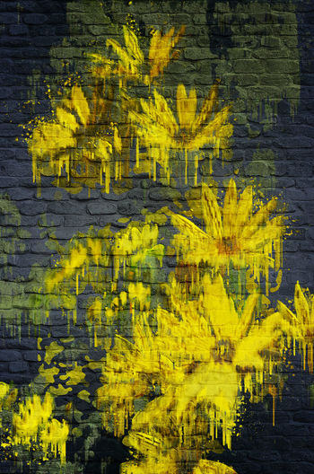 Full frame shot of yellow flowers on wall