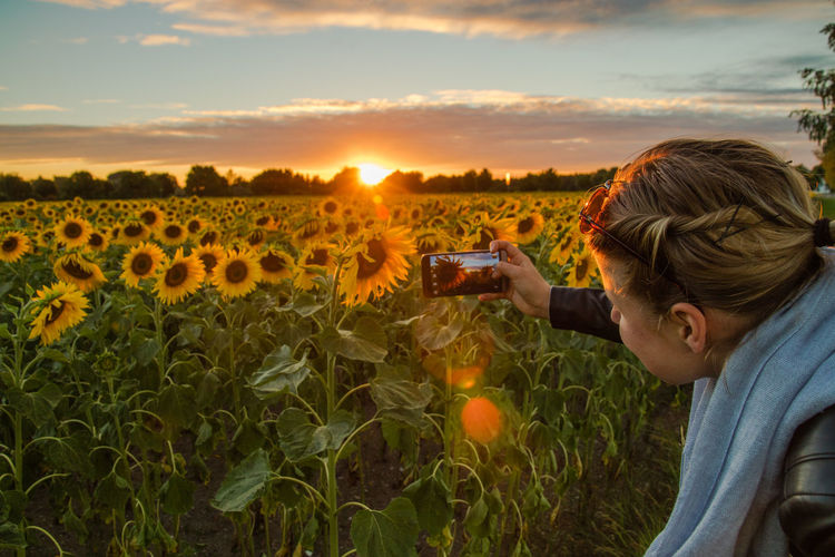 Rear view of man photographing on field against sky during sunset