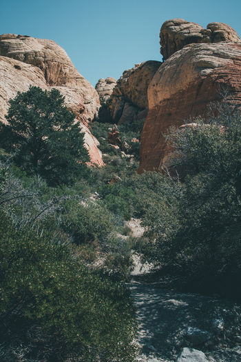 Adventure Amazing Beauty In Nature Bestoftheday Betterlandscapes Breathtaking Colorful Desert Exploring Fresh Air Hiking Landscape Landscape_Collection Mountain Nature Nature Photography Nature_collection Nature_perfection Outdoors Peaceful Rocks Tranquility Travel Trees Wonderful