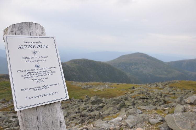 Alpine Hiking Alpine Zone Beauty In Nature Landscape Mountain Mt Washington Nature New Hampshire, USA Outdoors