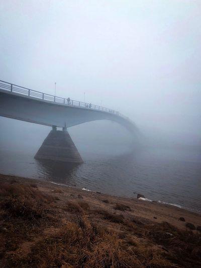 Bridge to