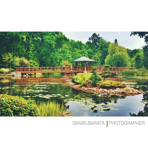 Ogród Japonski WROCLAW | POLAND Wroclaw, Poland Ogrod Japonese Japonese Garden Poland Erasmus