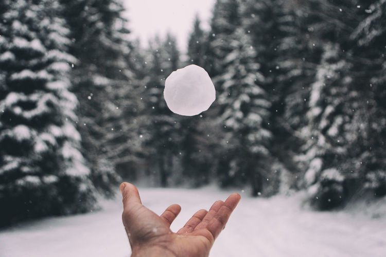 Human Hand Throwing Snowball Against Trees