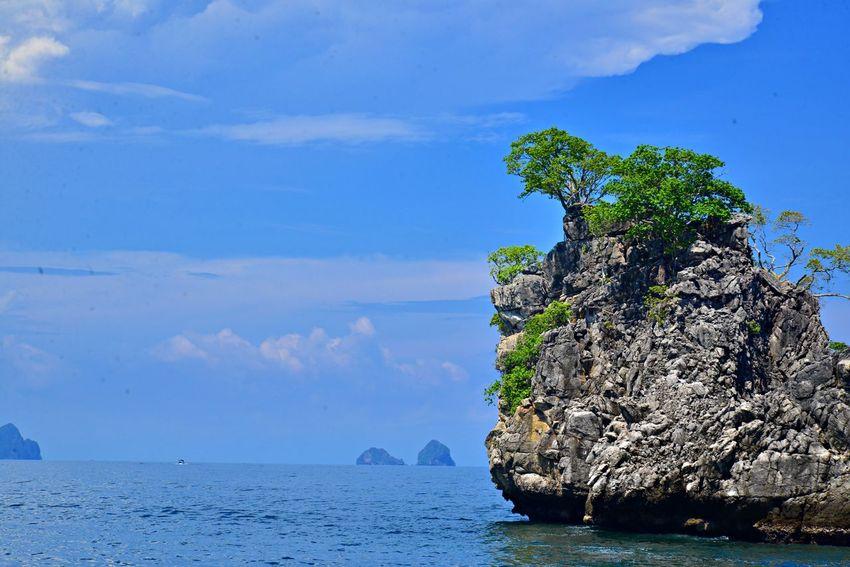 Nature Photography Andaman Sea Island Island In The Sea Nature_collection Sea Sea And Sky Sea View Sea Colours Beauty Of Sea Sea_collection Nature Colors Sea Photography Beauty In Nature Island And Sea Sea Blue Sea And Blue Sky