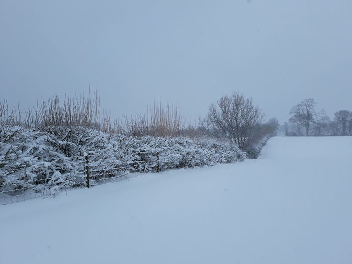 Blizzard Snow Beast From The East Freezing White Blackandwhite Nature Storm Emma Storm Field Snow Field
