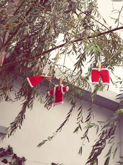 Santa Santa's Clothes Xmas