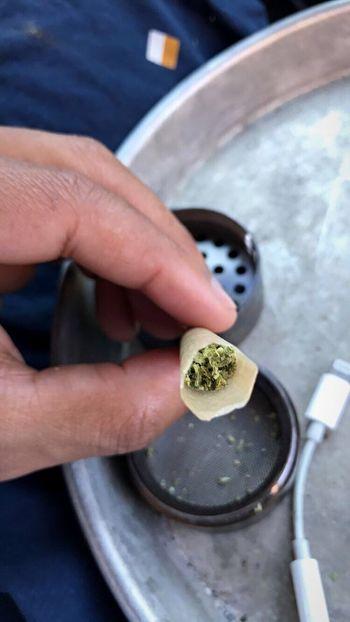 EyeEm Selects Freshness Weed Weed Life WeedPorn Weed Smoker Weed Plant Weedtime Canabis Marijuana Smoke Smoke Weed Smokeweedeveryday