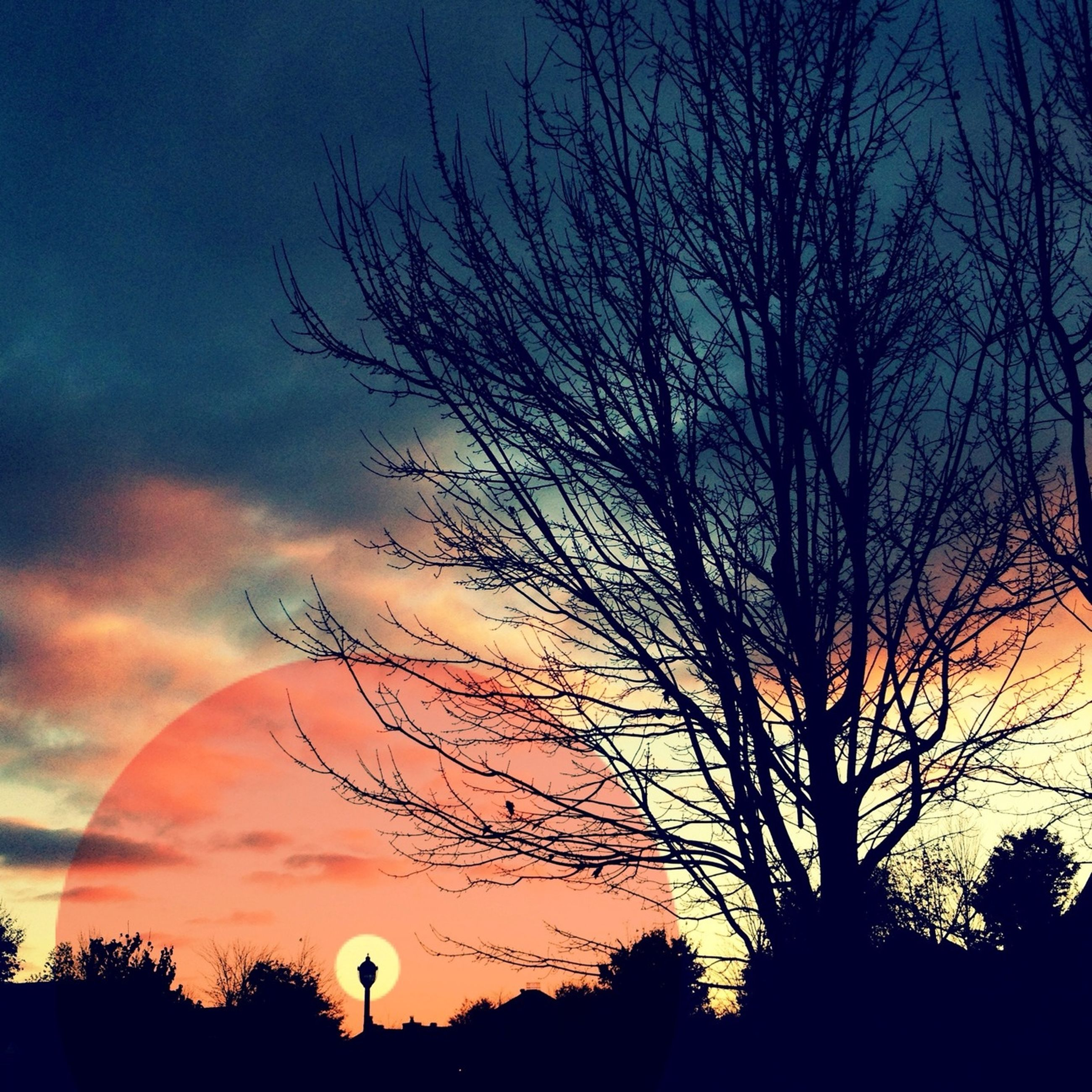 silhouette, sunset, bare tree, sky, tree, beauty in nature, tranquility, scenics, tranquil scene, cloud - sky, nature, low angle view, branch, orange color, dramatic sky, cloud, dusk, idyllic, outdoors, majestic
