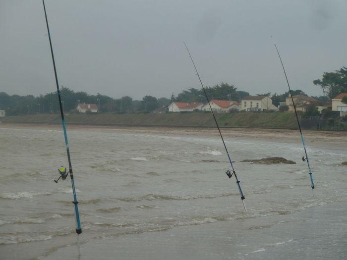 Three fishing