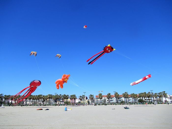 Cometas en el cielo Airshow Flying Aerobatics Flamingo Bird Crowd Blue Stunt Beach Motion Ballooning Festival Annual Event Kite Amusement Park Ride Parachute Formation Flying Hot Air Balloon