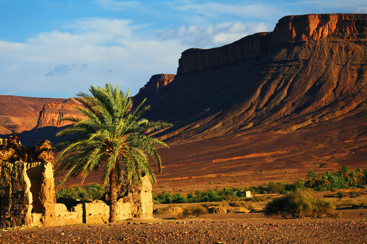 Canon Africa Desert Deserts Around The World Kasbah Landscape Landscape_Collection Landscape_photography Morocco Road Ruin Ruins Travel Travel Destinations Travel Photography Travelphotography