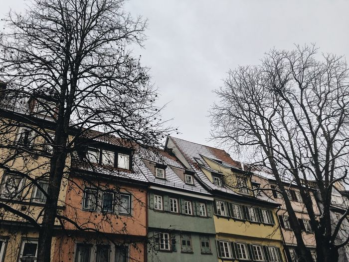 Old houses in Esslingen Snowy Scene Winterscapes Winterinthecity Fachwerkhaus Fachwerk Painted Houses Painted Ladies Esslingen Old Town Architecture Built Structure Building Exterior Sky Tree Low Angle View No People Building City Cloud - Sky Outdoors House Bare Tree Plant Nature Branch