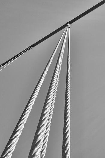 Vertical suspenders Cable-stayed Bridge Clear Sky Golden Gate Bridge Low Angle View No People Sky Steel Cable Suspension Bridge Tall - High