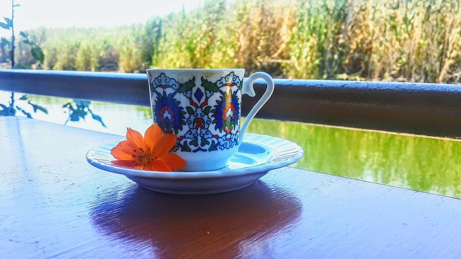 Table No People Drink Beauty In Nature EyeEm Gallery EyeEm Best Shots - Nature EyeEm Best Shots EyeEm Nature Lover Nature Photography The Week On EyeEm EyeEmNewHere The Secret In Orange Coffee ☕ Turkish Coffee☕️ Delicious Coffee And Flower Orange Plant