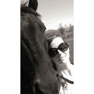 Bravo. Tetonvalley Tetons Morgans Horsesofinstagram Horselove Cowgirl Farmlife Bw CountryLivinG Shescountry Shades
