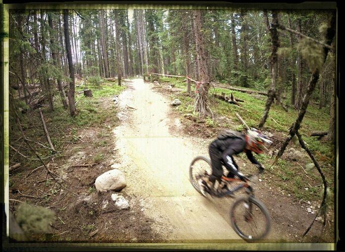 Downhill Bike Mountain Biking Bicycle Racing