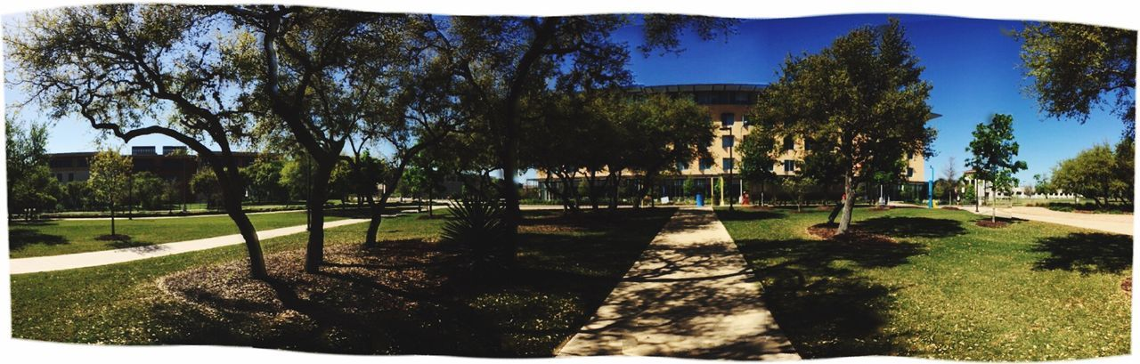 Panoramic view of the University of Texas at San Antonio campus buildings. Panoramic iPhone 6s photography Artphotography