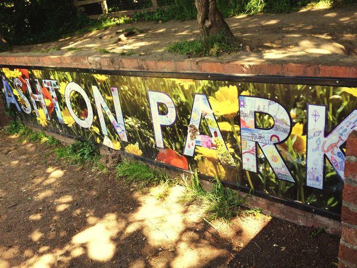 Summer fun Summer Sign Text Park Street Art Community Flowers Playground Wirral West Kirby Sunshine
