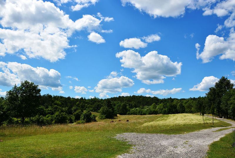 Blue Sky With Clouds Clouds Cloudscape Countryside Countryside Landscape Green Idyllic Scenery Nature Panorama Sky Sky And Clouds Wallpaper