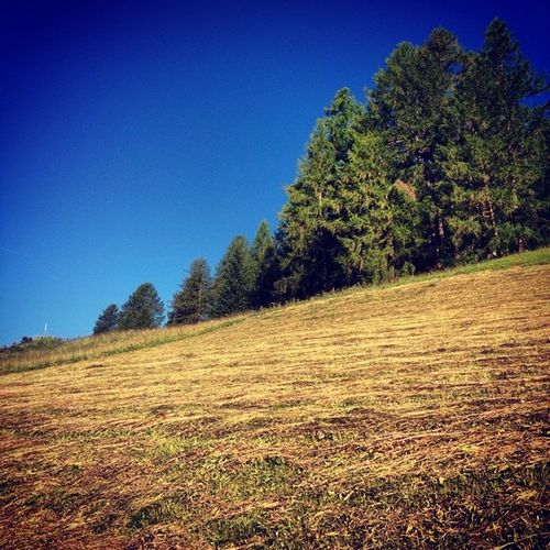 Sky Green Italy Iphonography Alps Dolomiti Lifeisbeautiful Dolomites LifeLessOrdinary Corvara Smellthextraordinary