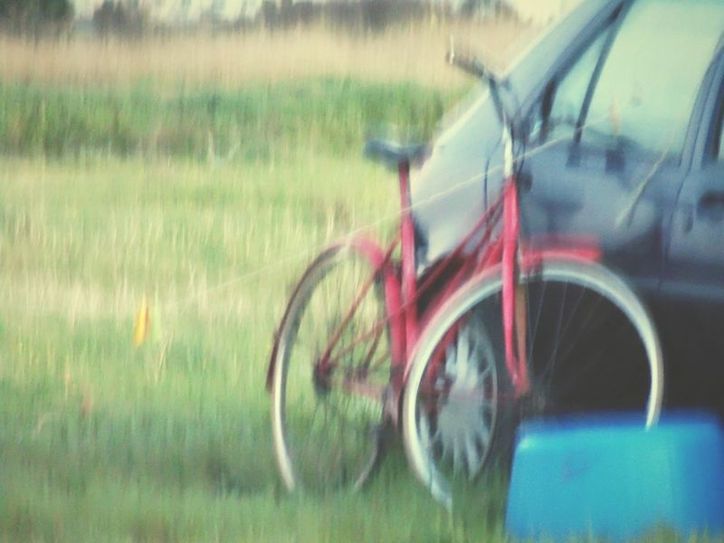 How I See My World Land Vehicle Mode Of Transport Glitch Grass Stationary Bycicle Car Detail EyeEm Best Shots EyeEm Gallery Eyeem4photography Eyeemphotography Getting Inspired Getting Creative Everybodystreet Showing Imperfection CyclingUnites