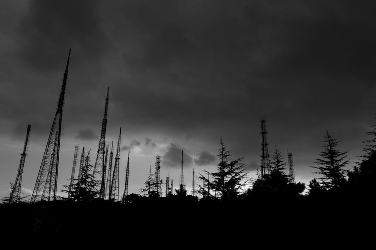 NikonD5200 Istanbul Pinetrees vs Radiotowers Pollution In My World