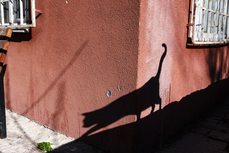 Shadow of old building on street