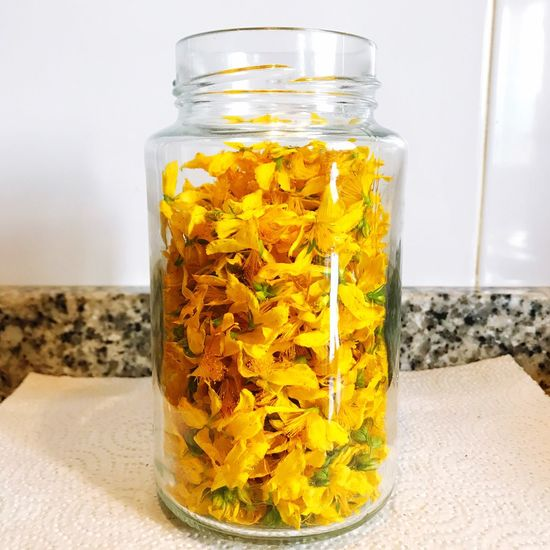 Organic Springtime Hypericum Jar Freshness Yellow Hypericum Perforatum Abundance Backgrounds Ecology Nature Freshness Petal Flower Medicine Alternative Medicine Herbology Medicinal Herb Homeopathy Medicinal Plant Plant Beauty In Nature Fragility Flower Head Abundance Of Flowers