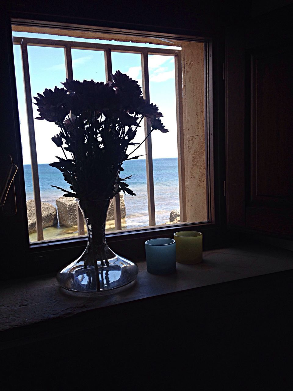 indoors, window, table, vase, home interior, no people, day, growth, flower, nature, tree, water