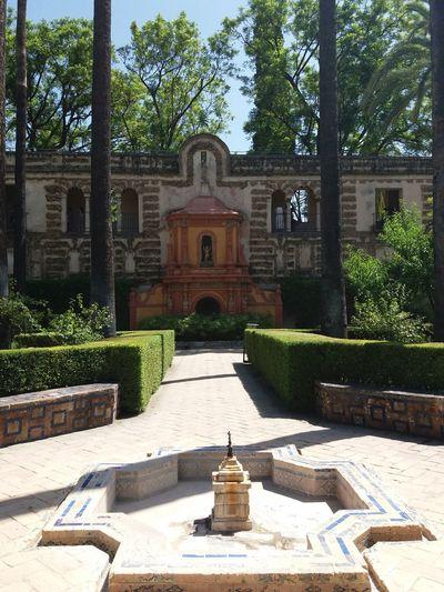 Religion Architecture History Spirituality Sevilla Alcazar Building Exterior Tree Outdoors