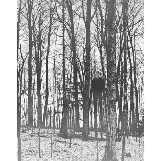 SlenderMan Forest Trees Nature scary followme slender man follow4follow followforfollow blackandwhite filter