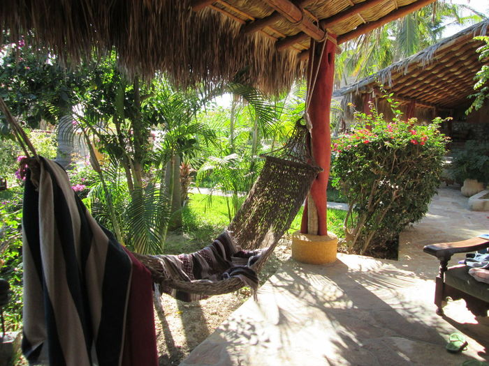 Baja California Mexico Buildings Architecture Relaxing Slow Pace Plant Day Sunlight Thatched Roof Nature Roof Tree No People Hanging Outdoors Growth Hammock Wood - Material Built Structure