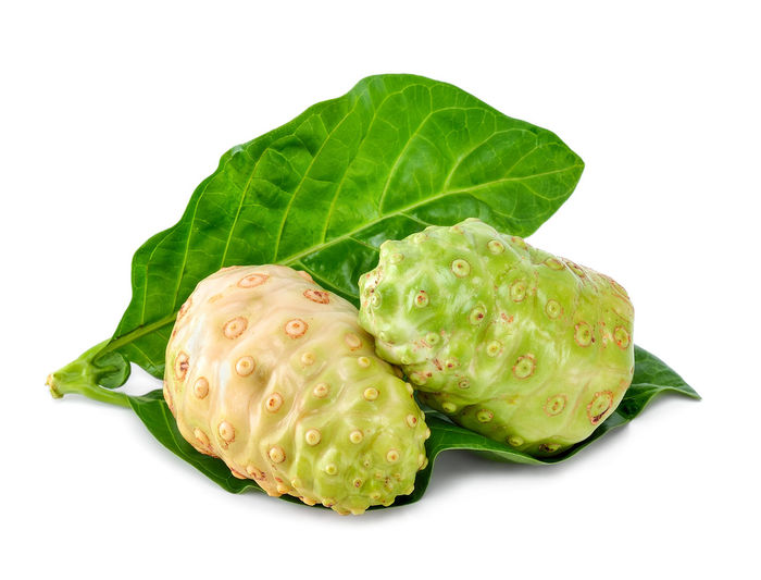 noni fruit and