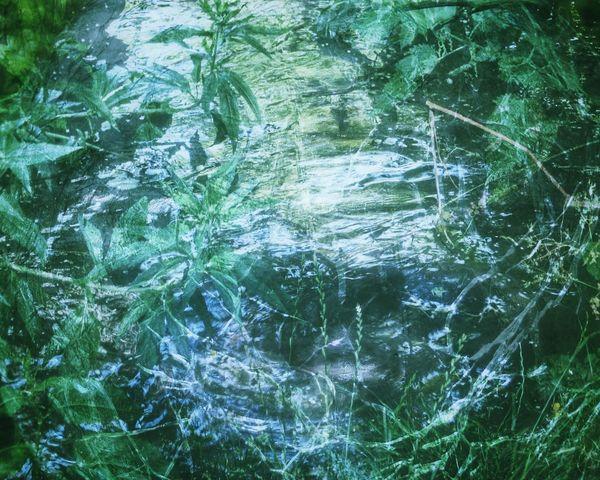 Overlay Editing EyeEmNewHere EyeEm Best Shots - Nature Green Color Wildlife & Nature Wildlife Water Waterreflections  Crystal Ball Backgrounds Full Frame Green Color Water No People Nature Day Outdoors Freshness