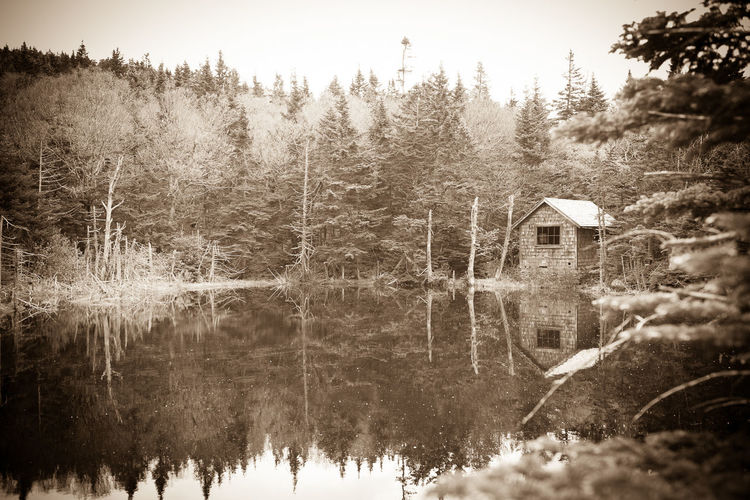 Shack along the Appalachian Trail Appalachian Trail Greylock Mount Nature Nature Photography Nature_collection No People Old Time Photos Outdoor Photography Outdoors Pond Reflection Reflection_collection Reflections In The Water Sepia Sepia Photography Sepia_collection Shack