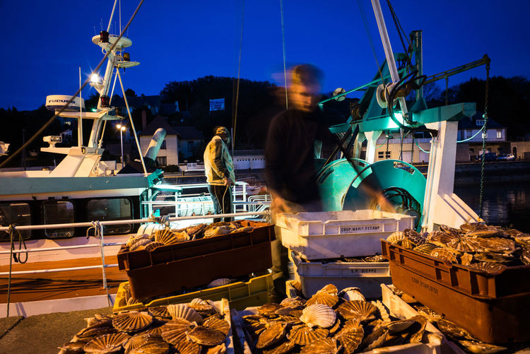 France The Week Of Eyeem The Week On EyeEm Boat Ride Evening Fishing Boat Habour Jakobsmuscheln Manual Worker Normandy Port-en-bessin Scallop Streetlights Streetphotography