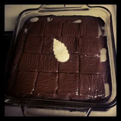 Aftereight Brownies Chocolate