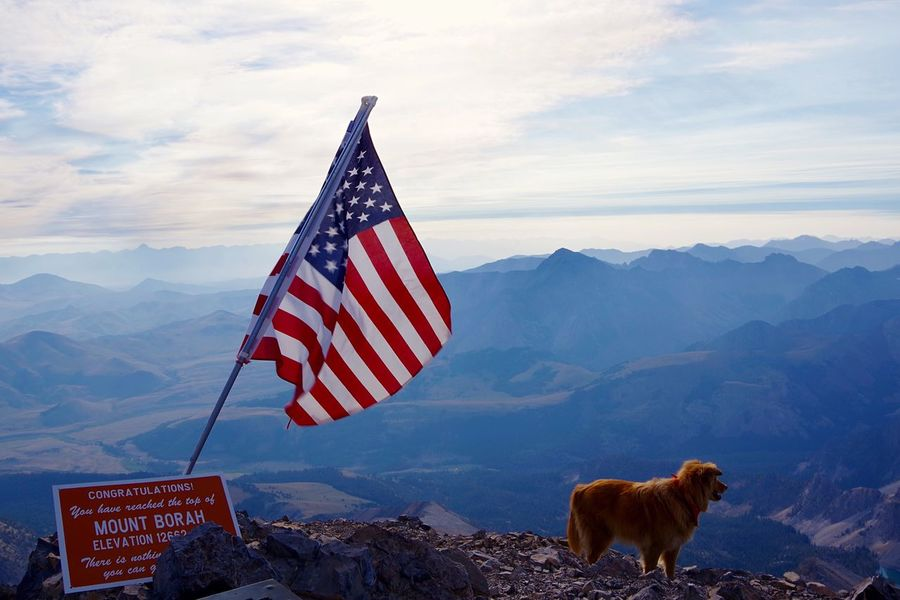 EyeEm Selects EyEmNewHere Mountain Patriotism Flag Nature Mountain Range Sky Outdoors Day No People Cloud - Sky Landscape Stars And Stripes Animal Themes Beauty In Nature Mammal Dog