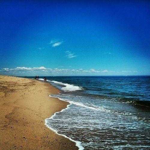 Endless beach and sea Beach Atlantic Sandy Rocky capecod provincetown