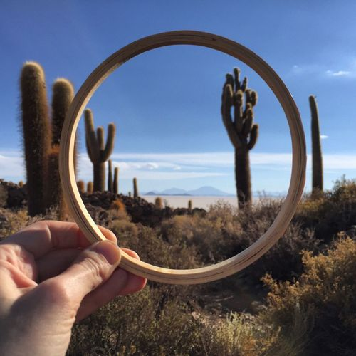 Cactus seen through ring held by person