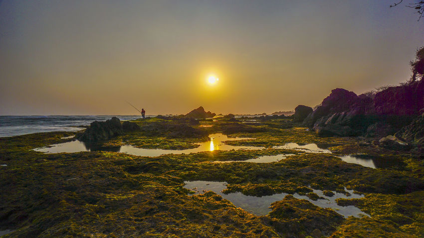 Sunset in Karang Suraga Southern Banten coastline. Portfolio Of Arif Wibowo Photograph By Jgawibowo Portfolio Of Jgawibowo Photography By Jgawibowo Banten Karang Suraga Sunset Coastline Seascape Rocky Rocky Beach Clouds And Sky Sunset_collection Rocky Coastline Seaweed Water Sea Sunset Beach Astronomy Galaxy UnderSea Sun Tree Sky Sunbeam Wave Low Tide Algae Shore