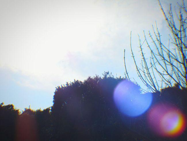Landscape Newtownards Light Spot Sky