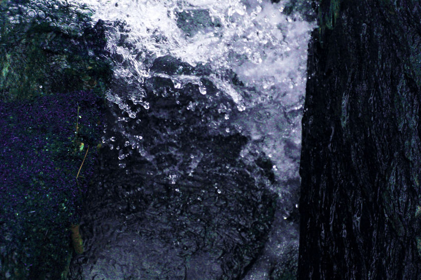 Beauty In Nature Close-up Day Nature No People Outdoor Photography Outdoors Textured  Tree Tree Trunk Water Waterfall