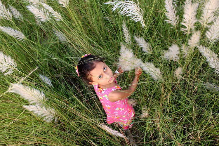 High Angle View Of Girl In Grass