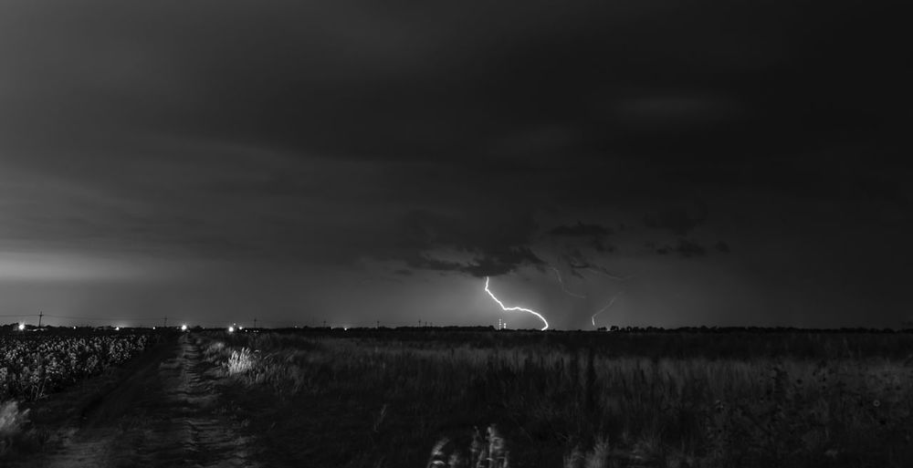 Lightning Power In Nature Thunderstorm Storm Forked Lightning Weather Storm Cloud Dramatic Sky Atmospheric Mood Danger Field Night Sky Nature Scenics Outdoors Beauty In Nature Horizon Over Land Cloud - Sky No People